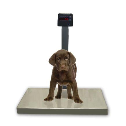 Balanca-Veterinaria-Digital---Ramuza---DP-Pet-200Kg