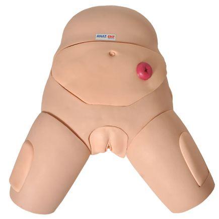 simulador-para-cateterizacao-bissexual-anatomic-com-dispositivo-controle.centermedical.com.br