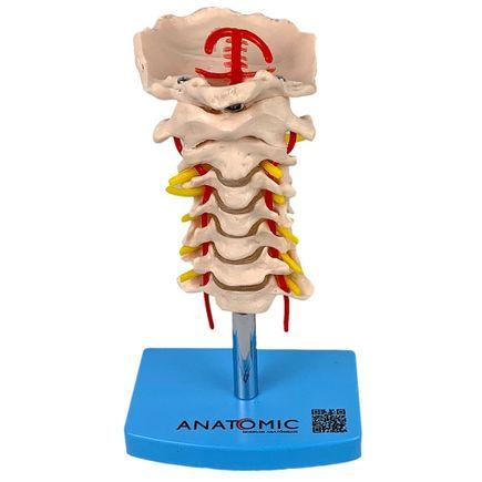 coluna-vertebral-cervical.centermedical.com.br