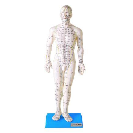 modelo-de-acupuntura-de-50-cm-masculino.centermedical.com.br