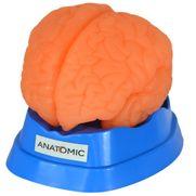 cerebro-em-9-partes.centermedical.com.br
