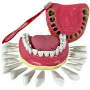 denticao-com-todos-os-dentes-removiveis.centermedical.com.br