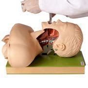 simulador-para-treino-de-intubacao-traqueal-com-visualizacao-das-vias-aereas.centermedical.com.br